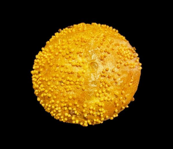 Bakker Degen Overloon - Maïsbroodje